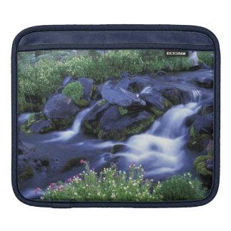 North America, USA, Washington, Mt. Rainier 3 iPad Sleeve