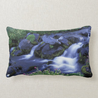 North America, USA, Washington, Mt. Rainier 3 Lumbar Pillow