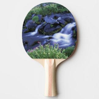 North America, USA, Washington, Mt. Rainier 3 Ping Pong Paddle