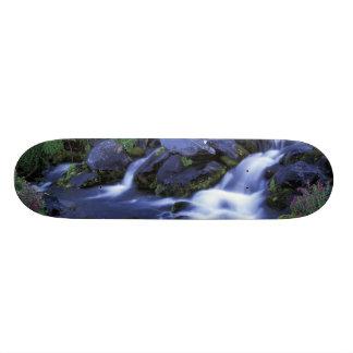 North America, USA, Washington, Mt. Rainier 3 Skate Boards
