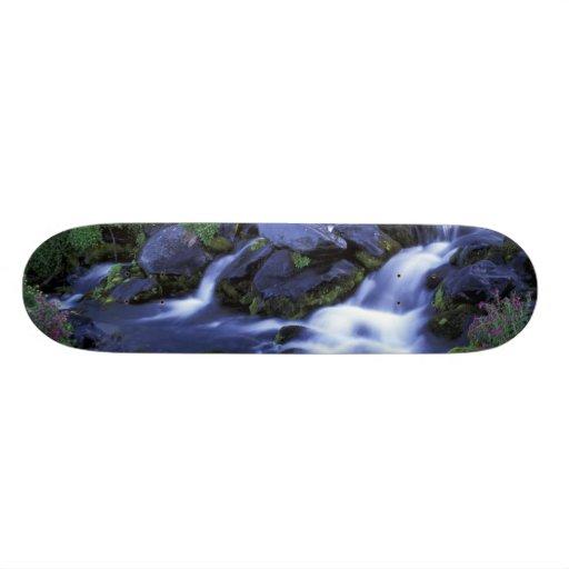 North America, USA, Washington, Mt. Rainier 3 Skate Board Decks