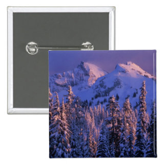 North America, USA, Washington, Mt. Rainier 4 15 Cm Square Badge