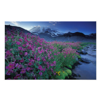 North America, USA, Washington, Mt. Rainier 6 Photo Print