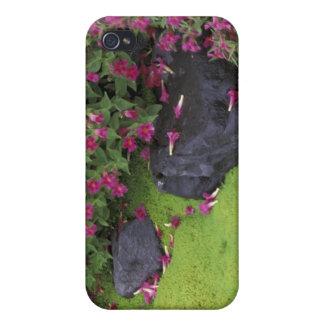 North America, USA, Washington, Mt. Rainier Case For iPhone 4