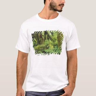 North America, USA, Washington, Olympic 3 T-Shirt