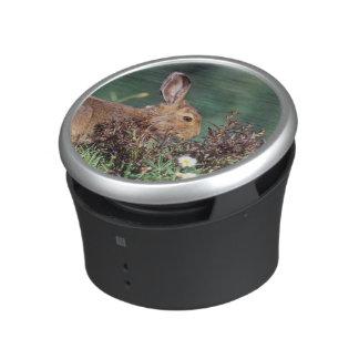North America, USA, Washington, Olympic 5 Bluetooth Speaker