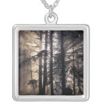 North America, USA, Washington, Olympic NF, Silver Plated Necklace