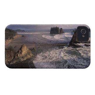 North America, USA, Washington, Olympic NP, iPhone 4 Covers