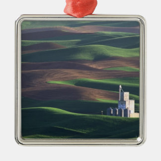 North America, USA, Washington, Palouse. The Christmas Ornament