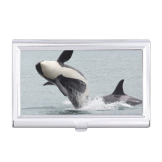 North America, USA, Washington, San Juan Business Card Holder