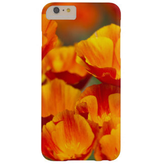 North America, USA, Washington, Seattle Barely There iPhone 6 Plus Case