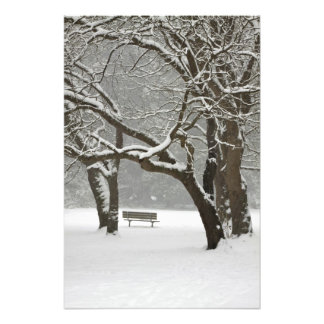 North America, USA, Washington, Seattle, Snow 2 Photo Print
