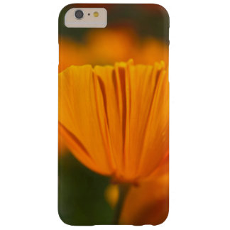 North America, USA, Washington, Seattle, Summer Barely There iPhone 6 Plus Case