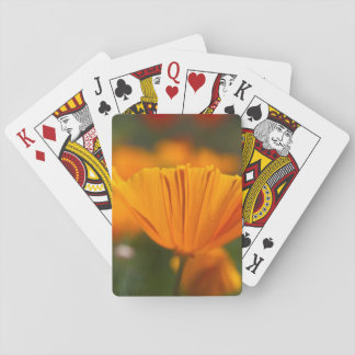 North America, USA, Washington, Seattle, Summer Playing Cards