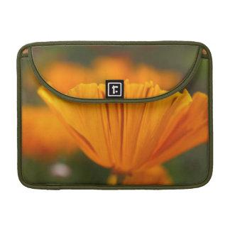 North America, USA, Washington, Seattle, Summer Sleeve For MacBooks