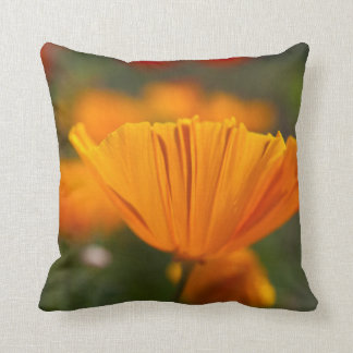 North America, USA, Washington, Seattle, Summer Throw Pillow