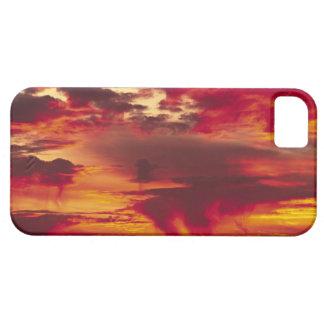 North America, USA, Washington, Seattle. Sunrise Case For The iPhone 5