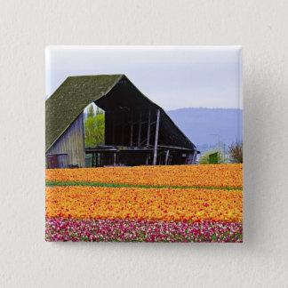 North America, USA, Washington, Skagit Valley. 2 15 Cm Square Badge