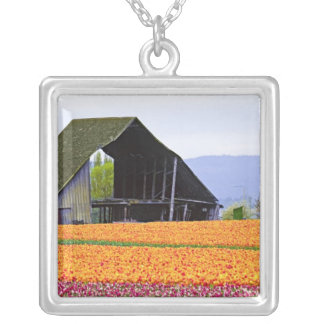 North America, USA, Washington, Skagit Valley. 2 Silver Plated Necklace