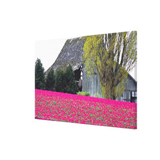 North America, USA, Washington, Skagit Valley. Gallery Wrap Canvas
