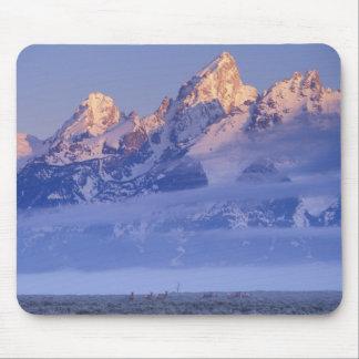 North America, USA, Wyoming, Grand Teton NP, 2 Mouse Pad
