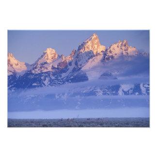 North America, USA, Wyoming, Grand Teton NP, 2 Photo Print
