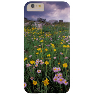 North America, USA, Wyoming, Yellowstone 2 Barely There iPhone 6 Plus Case