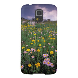 North America, USA, Wyoming, Yellowstone 2 Cases For Galaxy S5