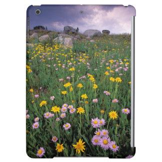 North America, USA, Wyoming, Yellowstone 2 iPad Air Cover