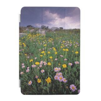 North America, USA, Wyoming, Yellowstone 2 iPad Mini Cover