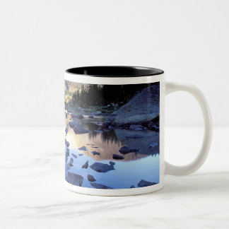 North America, USA, Wyoming, Yellowstone 3 Two-Tone Coffee Mug