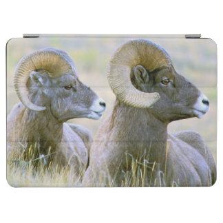 North America, USA, Wyoming, Yellowstone iPad Air Cover