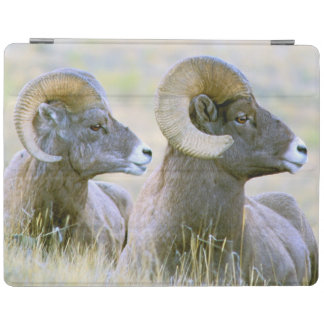 North America, USA, Wyoming, Yellowstone iPad Cover