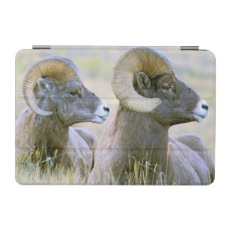 North America, USA, Wyoming, Yellowstone iPad Mini Cover