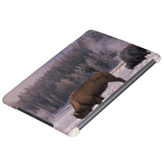 North America, USA, Wyoming, Yellowstone NP, iPad Air Case