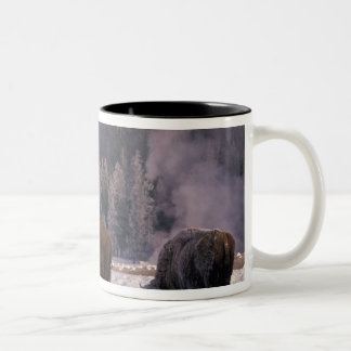 North America, USA, Wyoming, Yellowstone NP, Two-Tone Coffee Mug