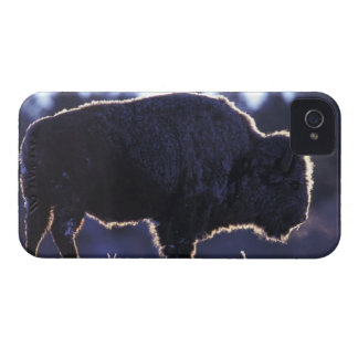 North America, Wyoming, Yellowstone National iPhone 4 Cover