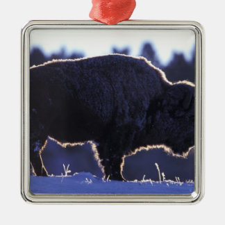 North America, Wyoming, Yellowstone National Silver-Colored Square Decoration