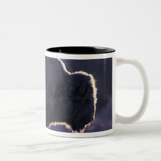 North America, Wyoming, Yellowstone National Two-Tone Coffee Mug