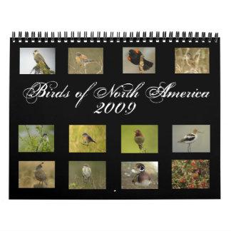 North American Birds Calendar