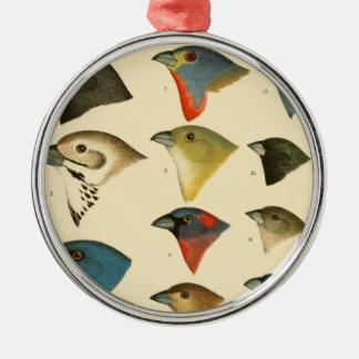 North American Birds Ornament