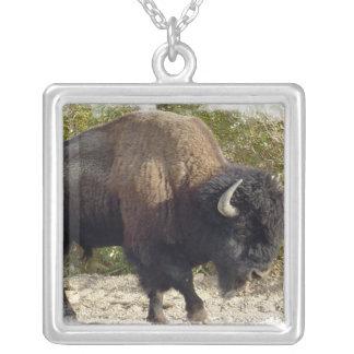 North American Bison Necklace