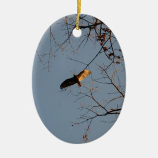 North American Buzzard coming home to roost Ceramic Oval Decoration