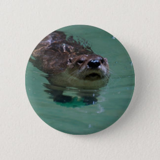 North American River Otter 6 Cm Round Badge