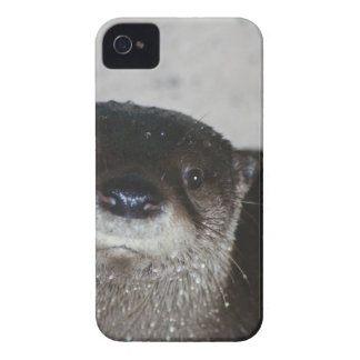 North American River Otter iPhone 4 Cover