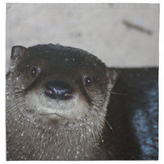 North American River Otter Napkin