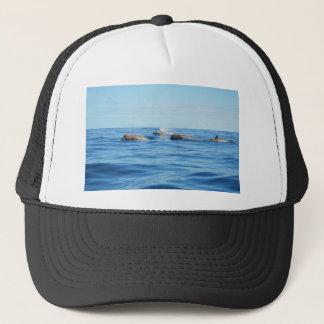 North Atlantic Bottlenose Whales Trucker Hat