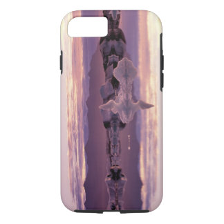 North Atlantic, Iceland, Breioamerkurjokull iPhone 8/7 Case