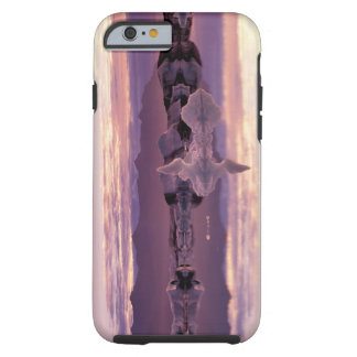 North Atlantic, Iceland, Breioamerkurjokull Tough iPhone 6 Case