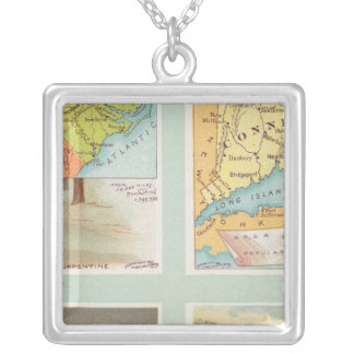 North Carolina, Connecticut, West Virginia, Ohio Silver Plated Necklace